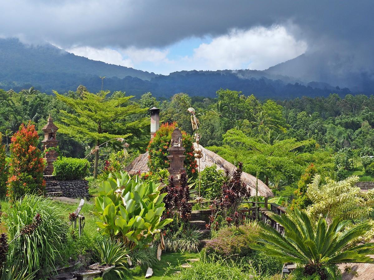 Zdjęcia: Jatiluwih, Bali, Pola ryżowe (IV), INDONEZJA