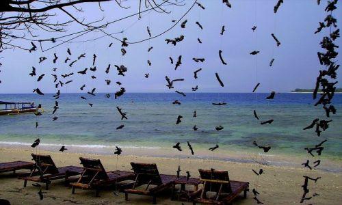 Zdjecie INDONEZJA /  Lombok / wysepka Gili Air /  plaża na Gili Air