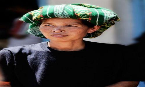 Zdjecie INDONEZJA / Sulawesi / Sulawesi / Zielono mi