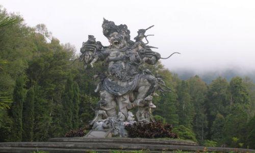 Zdjęcie INDONEZJA / W gorach, Bali / park / W gorach, park, rzezba