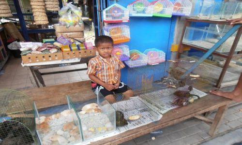 Zdjecie INDONEZJA / yogjakarta / bazar ptasi / maly sprzedawca