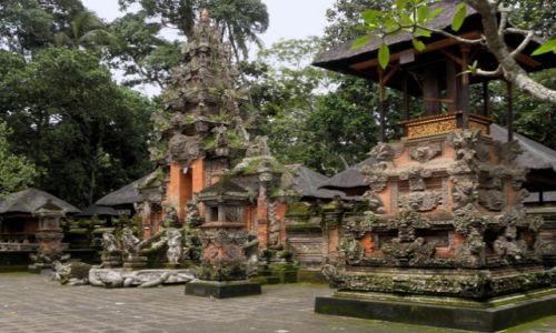 Zdjecie INDONEZJA / Bali / Ubud / Świątynia w Małpim Lesie