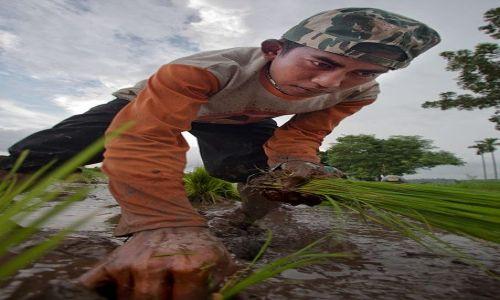 Zdjecie INDONEZJA / Lombok / polnoc / w pocie i znoju