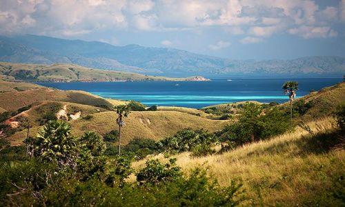 INDONEZJA / Male Wyspy Sundajskie / Rinca / Rinca Island