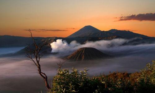 Zdjecie INDONEZJA / Jawa / Wschodnia część wyspy / Wulkan Bromo