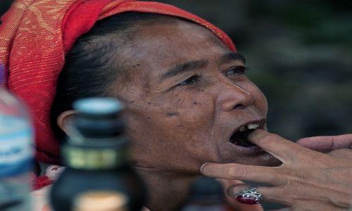 Zdjecie INDONEZJA / Lombok / Lombok / Portret z dentysta