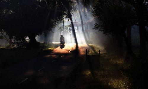 Zdjecie INDONEZJA / Bali / Indonezja / ...