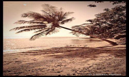 Zdjęcie INDONEZJA / Sulawesi / Togeans / Una-Una