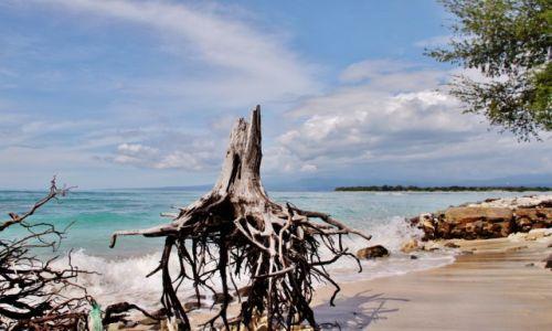 Zdjęcie INDONEZJA / Gili Island / Gili Island / Ciągle stoi....