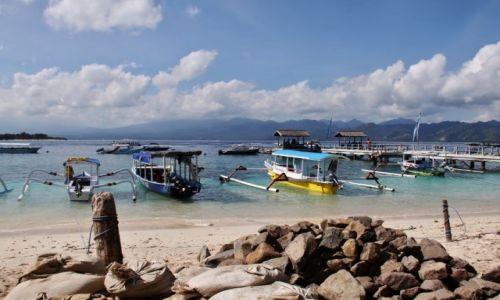 Zdjęcie INDONEZJA / Gili Island / Gili Island / Pajączki