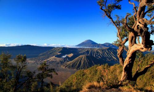Zdjecie INDONEZJA / Jawa / Wulkan Bromo / Konkurs