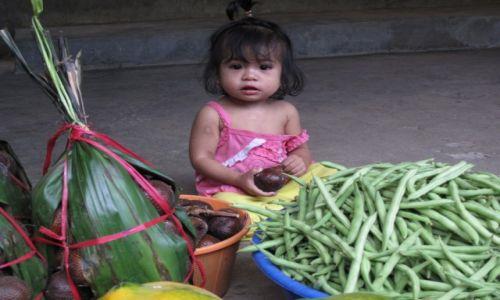 Zdjęcie INDONEZJA / Celebes / Celebes / Wprawianie się w obowiązki