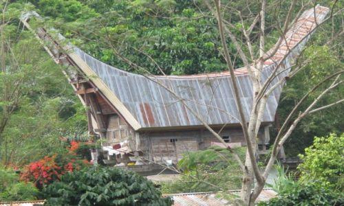 Zdjęcie INDONEZJA / Celebes / Celebes / Typowa budowla Toradżów