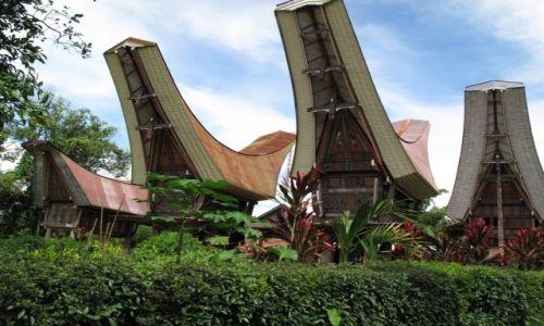 Zdjęcie INDONEZJA / Celebes / Celebes / Domy Torażów