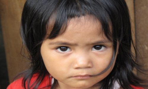 Zdjęcie INDONEZJA / Celebes / Celebes / Czy te oczy mogą kłamać?