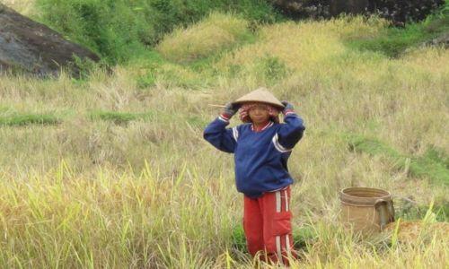 Zdjęcie INDONEZJA / Celebes / Celebes / Chwila odpoczynku