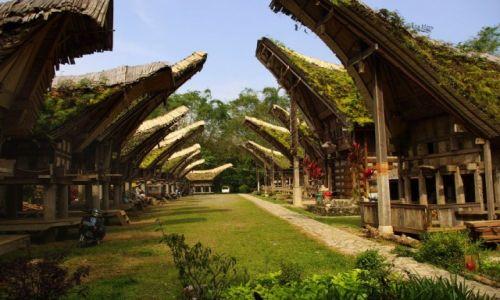 Zdjecie INDONEZJA / Sulawesi / Tana Toraja / Wioska tongkonanów
