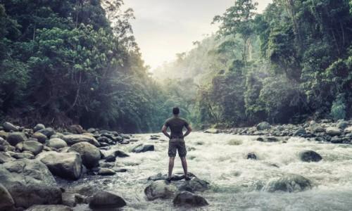 Zdjęcie INDONEZJA / Sumatra / Gunung Leusur / Sumatra jungle trekking