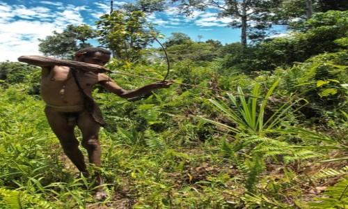 INDONEZJA / Papua Zachodnia / las deszczowy, dwa dni drogi od wioski Mabul / Korowaj - strzelec wyborowy :)