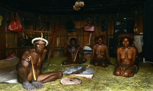 Zdjecie INDONEZJA / Dolina Baliem / Papua Zachodnia / Państwo Dani - z sąsiedzką wizytą
