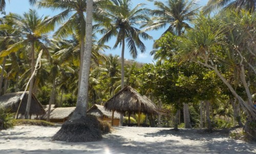 Zdjęcie INDONEZJA / Małe Wyspy Sundajskie / Nusa Penida / Nusa Penida