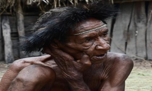 Zdjecie INDONEZJA / Papua Zachodnia / Dolina Baliem, wioska Dani / Pan Dani, ten w żałobie (czyli z obciętymi palcami)