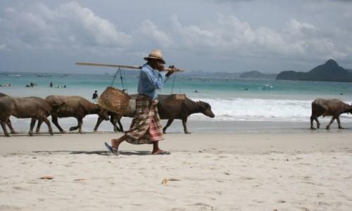 Zdjecie INDONEZJA / Lombok / Lombok / Plaża-Lombok