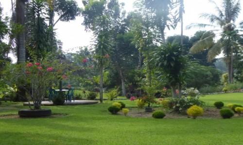 INDONEZJA / Sumatra / Bukit Lawang / Batu Mandi Ogród