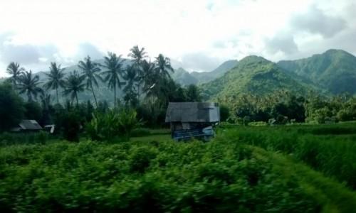Zdjęcie INDONEZJA / Bali / Bali, podróż busem, foto motion / Bali, gdzieś w drodze