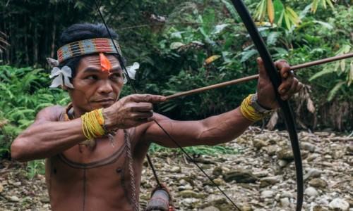 Zdjecie INDONEZJA / Sumatra / Siberut / hunting