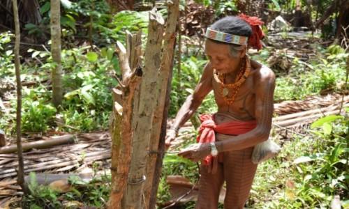 Zdjecie INDONEZJA / Sumatra / Siberut / Trekk