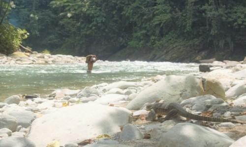 Zdjecie INDONEZJA / Sumatra / Bukit Lawang / Gunung Leuser