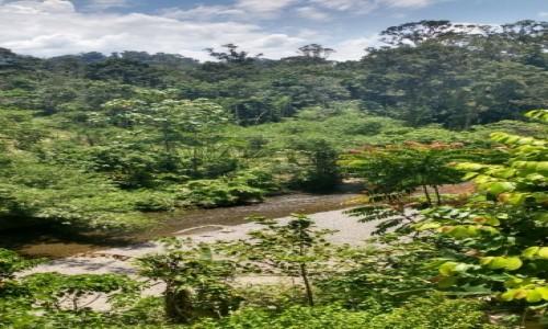 INDONEZJA / Sumatra / Bukit lawang / Czy może być piękniej?