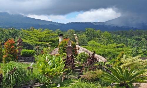 INDONEZJA / Bali / Jatiluwih / Pola ryżowe (IV)