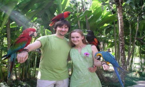 Zdjecie INDONEZJA / Bali / okolice Ubud / Miesiąc miodowy!