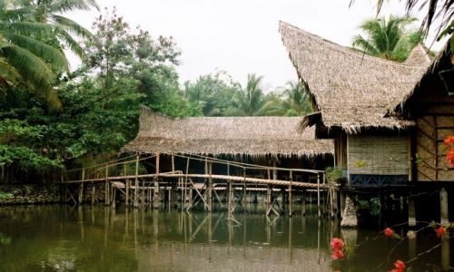 Zdjecie INDONEZJA / Jawa / hotel w Pandarandan / hotel na wodzie