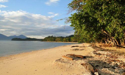 Zdjecie INDONEZJA / Sulawesi ( Celebes ) / Pulisan / Wschód słońca