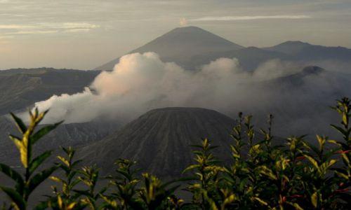 Zdjecie INDONEZJA / Jawa / wulkan Bromo / do kolekcji