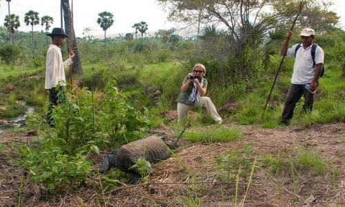 INDONEZJA / Park Narodowy Komodo / Rinca / Komodo 5