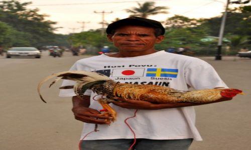 Zdjęcie INDONEZJA / Demokratyczna Republika Timor Leste / Baucau / Pan z Kogutem (ulubieńcem Timorczyków) 2