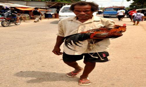Zdjęcie INDONEZJA / Demokratyczna Republika Timor Leste / Baucau / Pan z Kogutem (ulubieńcem Timorczyków) 3