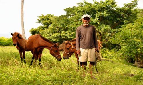 Zdjecie INDONEZJA / Demokratyczna Republika Timor Leste / Dili / Pan z koniem