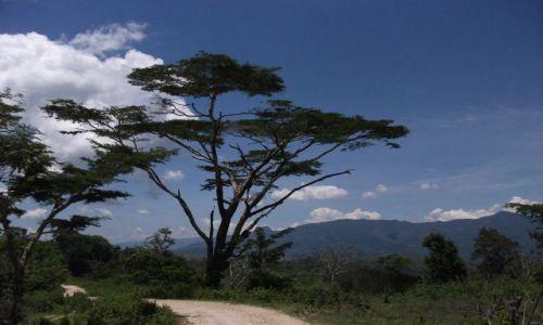 Zdjecie INDONEZJA / Timor Zachodni / okolice Soe / ... off road ...
