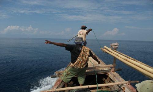 Zdjecie INDONEZJA / Lembata / Lalamera, okolice / ... w pogoni za grubą rybą...