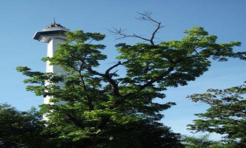 Zdjęcie INDONEZJA / Clelbes (Sulawesi) / Makasar / ... tło ...