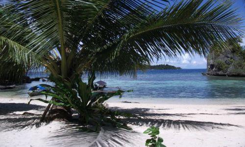 Zdjecie INDONEZJA / Togian Islands (Sulawesi) / Kadidiri / ... z progu ...