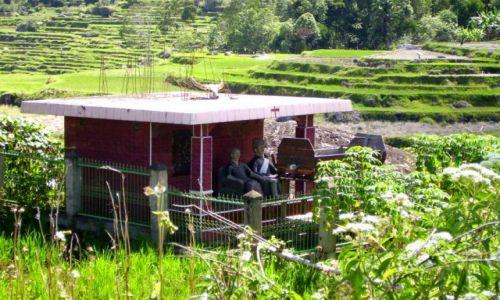 INDONEZJA / Sulawesi Południowe / kraina Tana Toradja / grobowiec pośród pól ryżowych