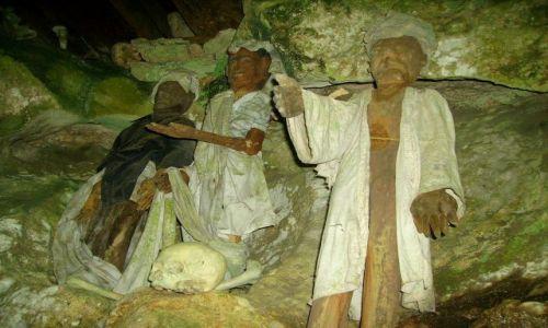 Zdjecie INDONEZJA / Sulawesi Południowe / Tampangallo / figury Tau-tau