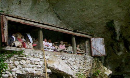 Zdjecie INDONEZJA / Sulawesi Południowe / kraina Tana Toradja / galeria tau-tau