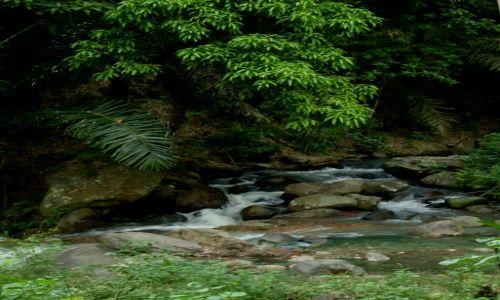 Zdjęcie INDONEZJA / Flores / okolice Mt. Inerie / ... gorący strumień...